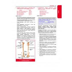 31. Baskı TTS Soruları - Anatomi