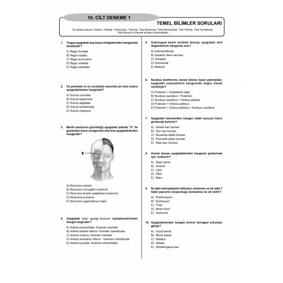 Denttest Deneme Sınavları / 10.Cilt