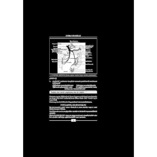 Nisan 2009 Açıklamalı Tus Soruları