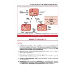 Prospektus Fakülte-Komite Patoloji ( 2.Baskı )
